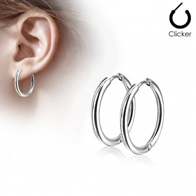 Pair of silver coloured earrings with hinge action