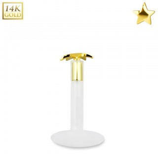 Bioflex labret with 14kt. gold star shaped top