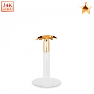 Bioflex labret with 14kt. rose gold star shaped top
