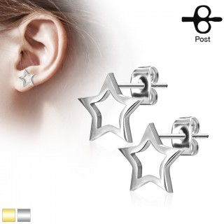 Pair of earrings with hollow star