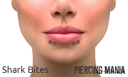 Shark Bites Piercing